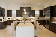 Montverde, Transitional Bi-level Island Kitchen 03